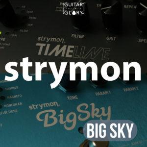 strymon big sky artist presets pay once for a lifetime subscription guitarforhisglory. Black Bedroom Furniture Sets. Home Design Ideas